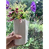 facettierte Vase, Porzellan