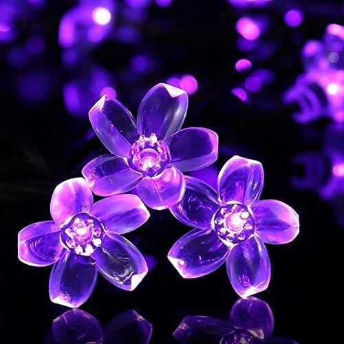 Pfirsich Solar im Freienschnur Lichter, Wasserdichtes 22.97ft 50 LED Feenhafte Lichter, Kirschblüten Weihnachtsbaum Lichter, Solarlichter für Garten im Freienpartei Weihnachtsdekorationen (Lila)--KEEDA (Blumen Led-zeichen)