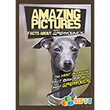 Amazing Pictures and Facts About Greyhounds: The Most Amazing Fact Book for Kids About Greyhounds  (Kid's U) (English Edition)