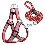 Haustiergeschirr Leinen Seil Set einstellbar reflektierend bequem und atmungsaktiv Nylon für kleine mittlere Hund rot schwarz blau