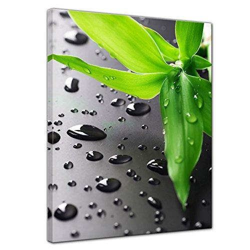 Kunstdruck - Frischer Bambus - Bild auf Leinwand - 40x50 cm einteilig - Leinwandbilder - Geist & Seele - asiatisch - Glücksbambus - Gras mit Wassertropfen