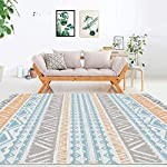 HEBAGWA carpet Modern Minimalist Living Room Carpet Coffee Table Mat 200x300cm Color-6 as shown