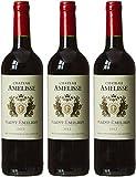 CHATEAU AMELISSE France Bordeaux MDC Vin Saint Emilion AOP 2012 ...