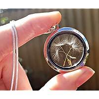 Medallón de apertura Cadena de plata esterlina collar de semillas de diente de león - collar de relicario joyas únicas para mujeres Regalo de san valentin para novia