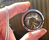 Medallón de apertura Cadena de plata esterlina collar de semillas de diente de león - collar de relicario joyas únicas para mujeres Regalo para novia