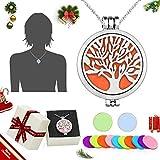 WAWJ 316L Edelstahl ätherisches Öl Diffusor Halskette, Aromatherapie ätherisches Öl Diffusor Damen Halskette Anhänger Weihnachten Geburtstag Geschenk