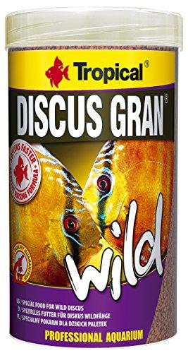 Tropical Discus Gran Wild, 1er Pack (1 x 250 ml) -