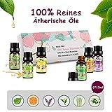 Ätherische Öle Set Aromatherapie Essential Oils für Diffuser Bio - 100% Reines Aroma Duftöle - Teebaumsöl, Lavendelöl, Pfefferminzöl, Eukalyptusöl, Zitronengrasöl, Süßorangeöl MEHRWEG