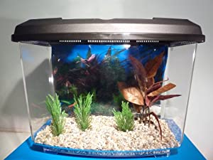Starter Aquarium Small Fish Tank Complete With Filter,Gravel & Decor Pack from Fish Around