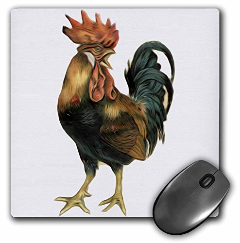 3drose LLC 20,3x 20,3x 0,6cm Vintage Antik Bird Illustration Cock Hahn Huhn Mauspad (MP 119023_ 1) - Hahn Neuheit