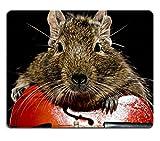 Die besten Liili Schreibtische - Mousepads Funny Degu Nagetier Spielen Violoncello auf schwarzem Bewertungen