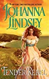 Tender Rebel (Malory-Anderson Family, Band 2)