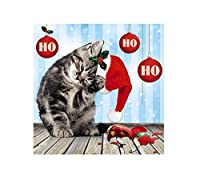 Me to You up Close gatto Natale cappello rosso ho ho ho Greeting Card
