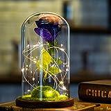 Yazidan Romantische Glasrosen-Hochzeits -Dekorations LED-Licht mit gefallenen Blütenblättern in Einer Glaskuppel auf Einer hölzernen Basis Geschenk zum Valentinstag Jubiläum Geburtstag Hochzeit