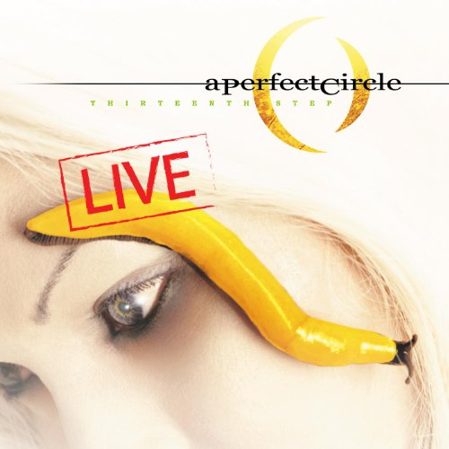 Thirteenth Step - Live