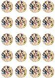 20 vorgeschnittenen Tinkerbell und Freunde (Rosa) Runde Essbare Kuchen-Deckel-Dekorationen