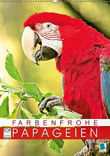 Farbenfrohe Papageien (Wandkalender 2018 DIN A2 hoch): Ara, Lori und Kakadu: farbenfroh schillert und leuchtet das Federkleid (Monatskalender, 14 ... [Kalender] [Apr 01, 2017] CALVENDO, k.A.