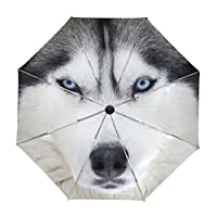 My Daily Husky Dog Travel Auto Open/Close Umbrella with Anti-UV Windproof Lightweight