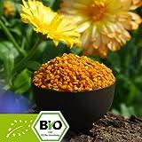 Bio Blütenpollen 1kg
