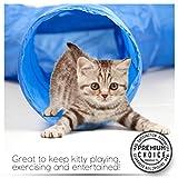 Katzentunnelspiel, Tunnel Interaktives Spiel zur Unterhaltung und Bewegung des Haustiers und zum Stoppen von Miauen und Kratzen. - 2