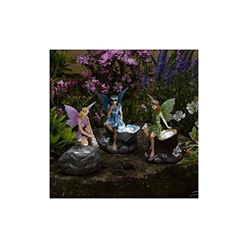 Smart Garden Luz solar Led de búhos mágica Juego de 3 Multicolor