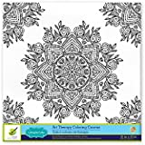 Living in Color Art Therapy Stretch Artist Canvas  Primed, 12in x 12in, Color your own beautiful design on Canvas, Mandala