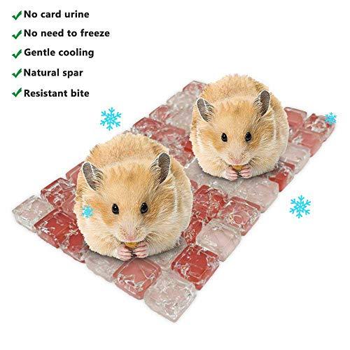 TEEPAO Meerschweinchen Hamster Eismatte Naturspar Stein Kühlkissen Atmungsaktiv Wärmeableitung Kleintierbett Haus für Hamster Chinchilla Holländisches Schweinchen Kaninchen, 4'' x 6'', rot -