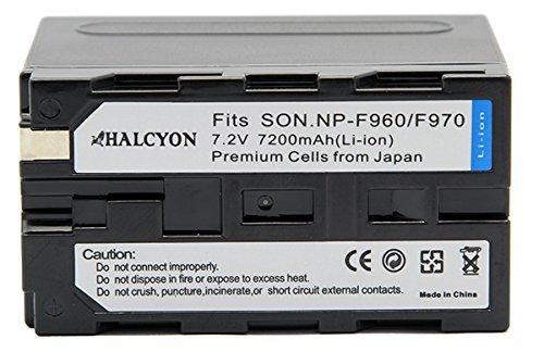 Halcyon DCR VX2000