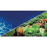 Hobby 31136 Fotorückwandzuschnitt Pflanzen 8, marin blau