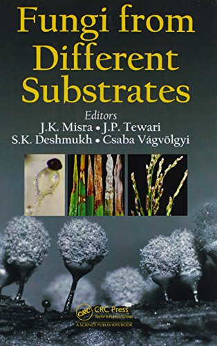 Fungi From Different Substrates (Progress in Mycological Research)