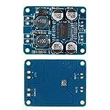 ARCELI TPA3118 PBTL Módulo Amplificador Mono Digital Amplificador 1x60W Potencia AMP DC 8-24V