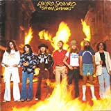 Street Survivors [Vinyl LP]