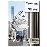 TYZY Pulire Il Vetro Pulitrice per vetri a Doppia Camera per Uso Domestico Forti montanti magnetici Regolabili Edifici per la Pulizia