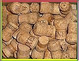 Korken 30 Naturkorken Sektkorken von Sektflaschen, gebraucht dicker dichter Kork von Flaschen Sekt Prosecco Champagner Korken Flaschenkorken Naturkorken Kork Naturprodukte