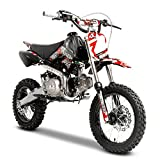 M2R KX110F 110cc Pit Bike Racing Rouge 76 cm