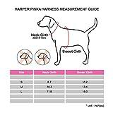 Pinkaholic New York NAPA-AH7108 Hundeweste Harper Pinka, L, grün -
