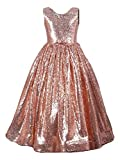Fairy Dolls Girls Princess Ball Gown, Full Sequined Dress,Girls Birthday Gown