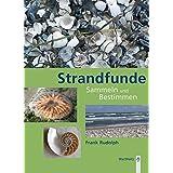Strandfunde: Sammeln & Bestimmen von Tieren und Pflanzen an Nord- und Ostseeküste