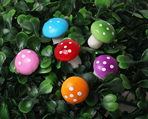 SecretRain Miniature Garden Fairy Ornament Flower Pot Plant Pot Home Decor 6pcs Mushroom