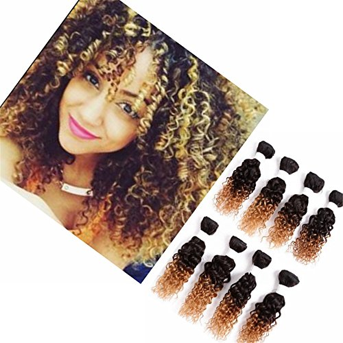 8 Zoll 1B 27 Eunice Brazilian Human Hair Kinky Curly 8 Bundles Brasilianische Remy Menschen Virgin Hair Extensions Lose Welle Menschliche Haar Webart Bundles Jerry Curly Ombre Brown Color (8 zoll(jerry curly), 1B 27)