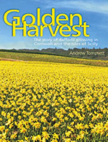 golden-harvest-the-story-of-daffodil-growing-in-cornwall-and-the-isles-of-scilly