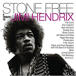 Stone Free - A Tribute To Jimi Hendrix [Import USA] by Artistes Divers (B000002MNC) | Amazon Products
