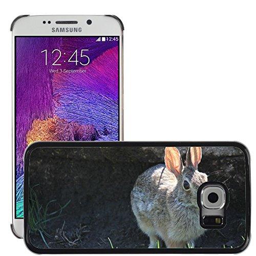 gogomobile Hot Style Handy PC Hartschalen-Schutzhülle Cover//m00118391Kaninchen Bunny Hase Tier Ostern//Samsung Galaxy S6Edge (passt nicht für (Passt Bunny)