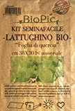 Lattuga bio kit completo orto Seminafacile / Organic Italian lettuce easy growing kit