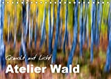 Atelier Wald - gemalt mit Licht (Tischkalender 2019 DIN A5 quer): Naturfotografie der Spitzenklasse - ohne Computereffekte! (Monatskalender, 14 Seiten ) (CALVENDO Natur)