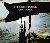 Songtexte von Tony Banks - A Curious Feeling