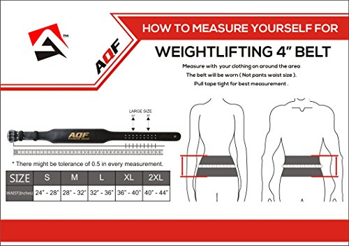 AQF-Leather-Weight-Lifting-Belt-Body-Building-Fitness-Gym-Back-Support-Padded-X-Large-36-40