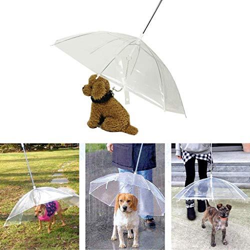 Autone, ombrello portatile trasparente per cani di piccola taglia, per cani e gatti