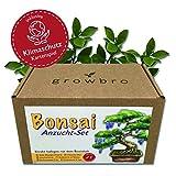 Bonsai - growbro - Wisteria Anzuchtset inkl. Klima-Karten, Züchte deinen eigenen Bonsai-Bro, Bonsaibaum für Frauen und Männer, Geschenk Set inkl. Bonsai Samen, Schere, Sprühflasche, Bio-Töpfe, uvm.