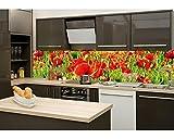 Küchenrückwand Folie selbstklebend ROTE MOHNBLUMEN 260 x 60 cm | Klebefolie - Dekofolie - Spritzchutz für Küche | PREMIUM QUALITÄT